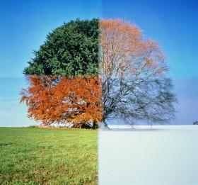 seasons-787195